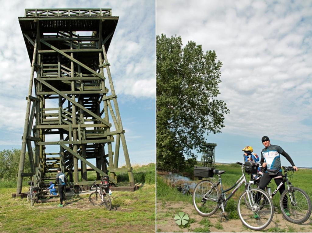 wycieczki rowerowe dla dzieci