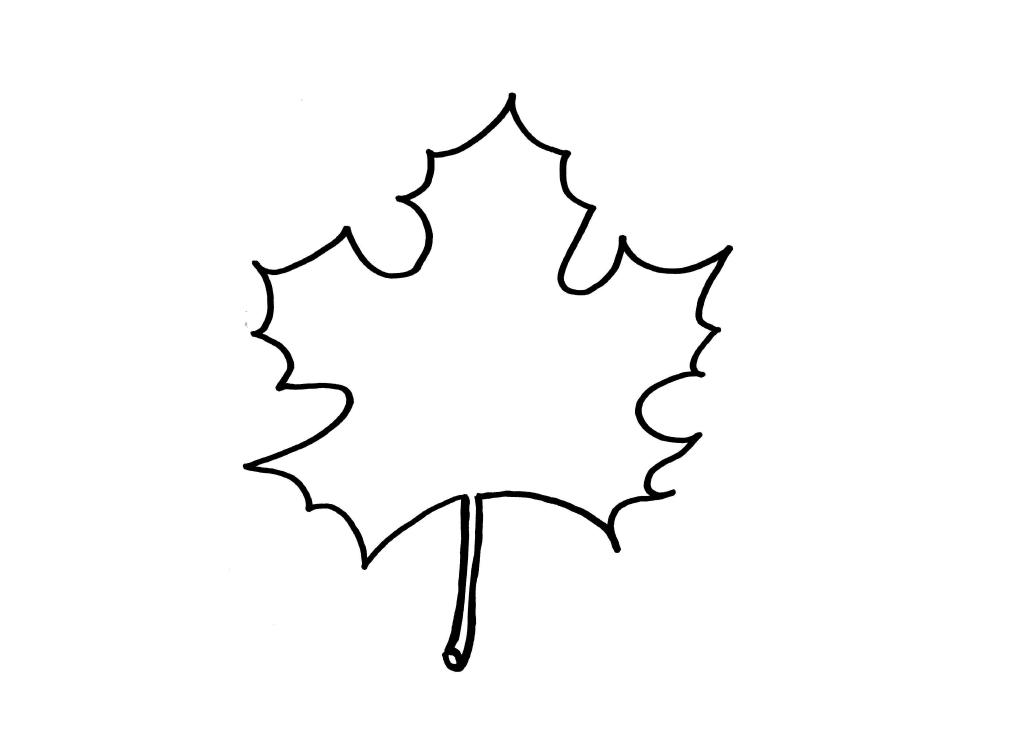 szablon liscia