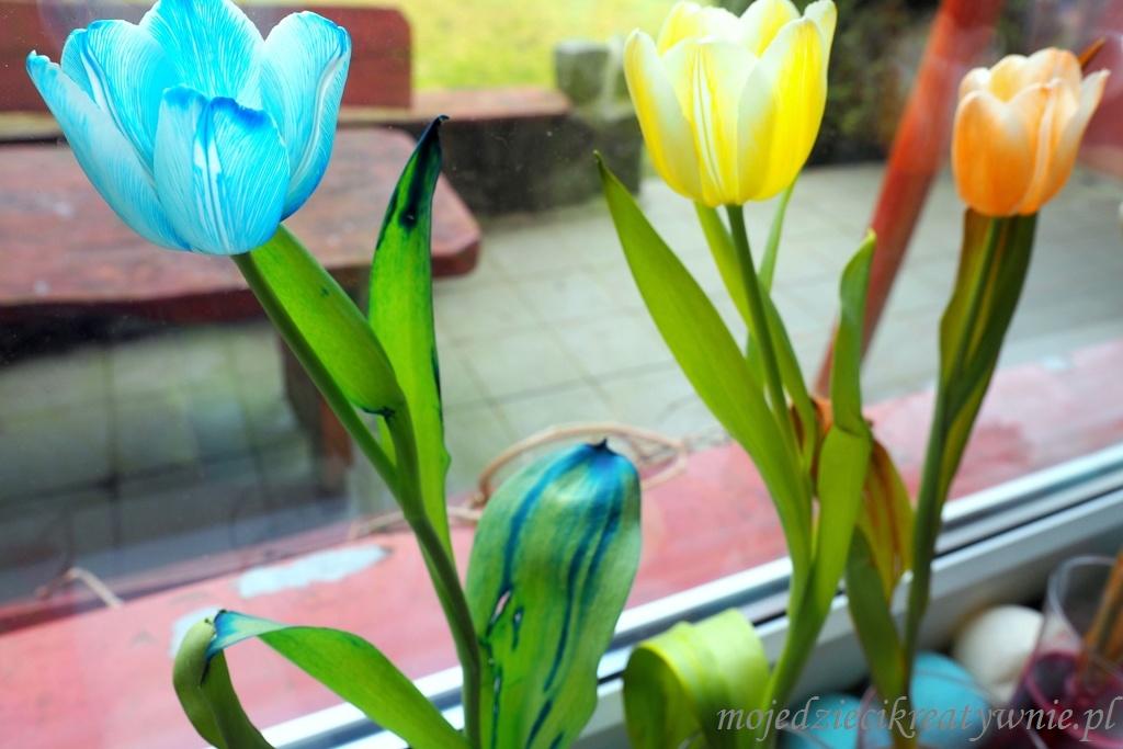 jak zabarwić kwiaty