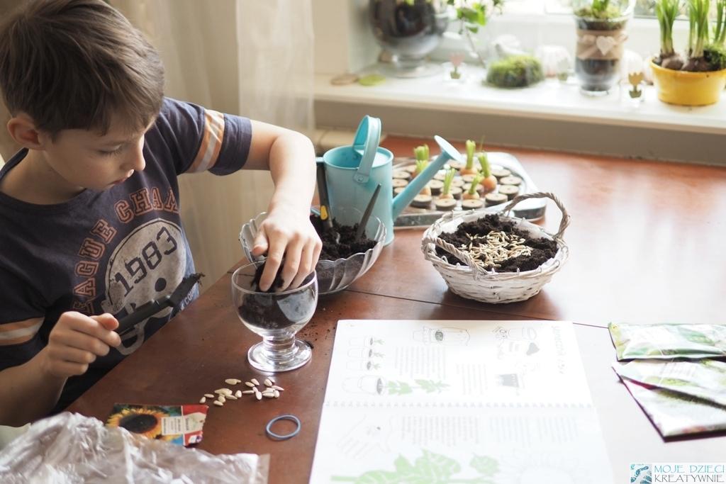 blogi ogrodnicze diy wnetrza