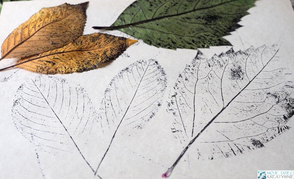 kalkowanie liści kalkografia