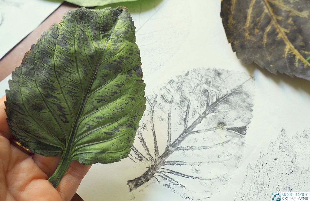 odbijanie liści