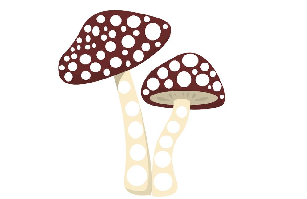 grzyby do wyklejania plastelina, grzyby kolorowanka do druku