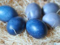 barwienie jajek kapusta