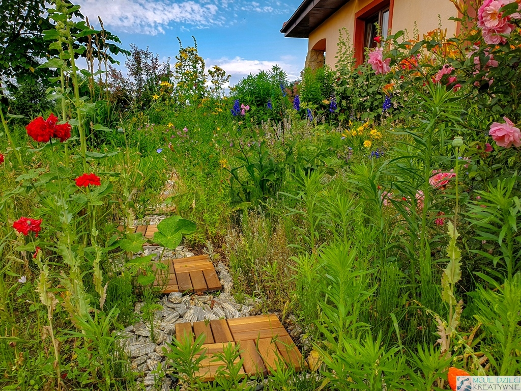 ogrod na wsi pomysly