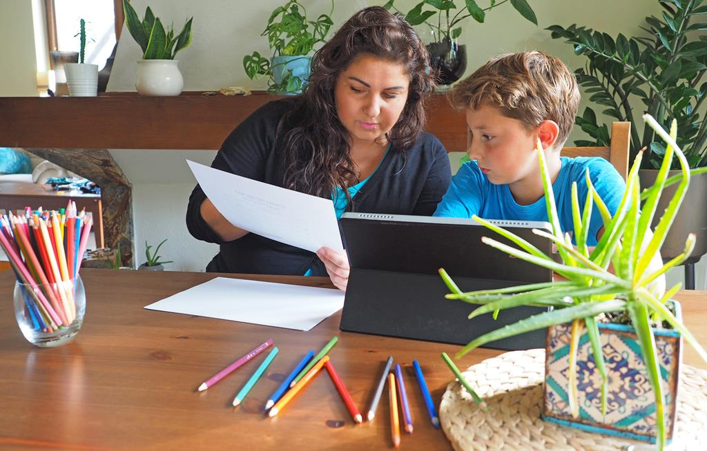 moje dzieci kreatywnie, porgramy edukacyjne dla dzieci, nauka online, ewa wojtan