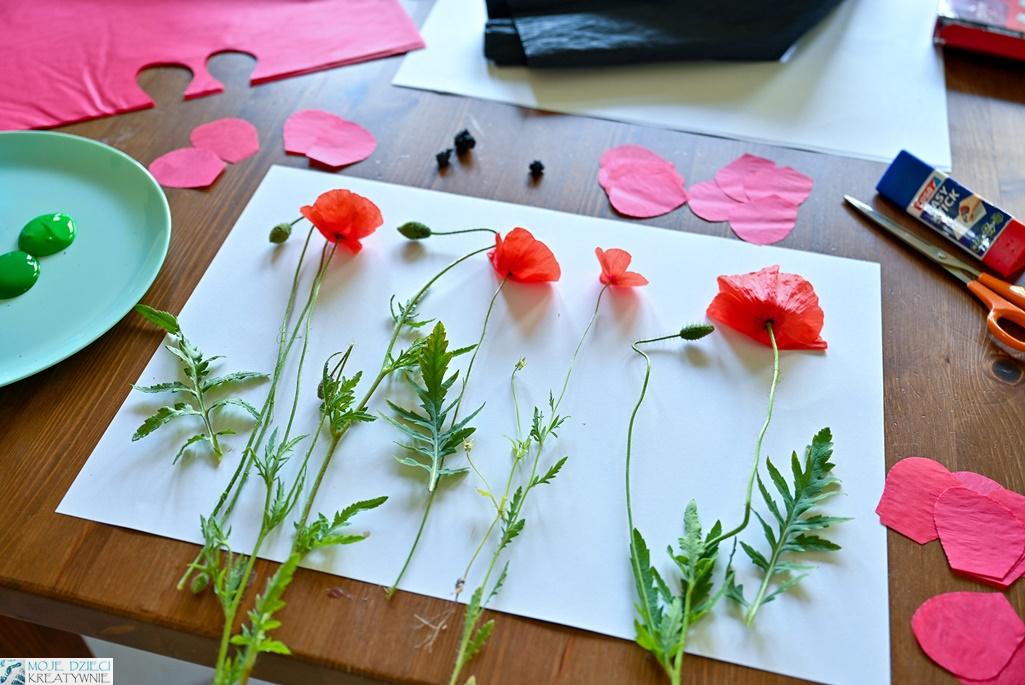 prace plastyczne lato, jak namalować łąkę, maki na papierze, maki praca plastyczna dla dzieci